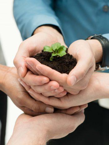 Norma ISO 14001 y su implantación en la empresa