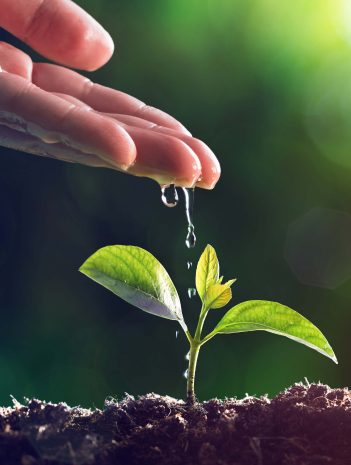 Sistema de gestión medioambiental en la industria