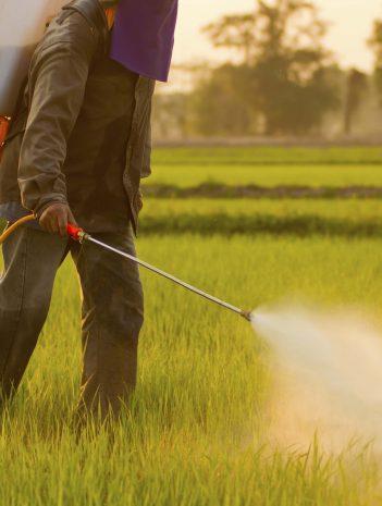 Biocidas tipos y métodos de lucha