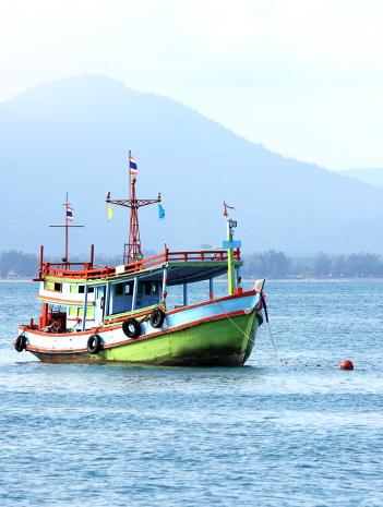 Actividades comerciales pesqueras