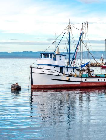 Prevención de riesgos y accidentes en sector marina mercante