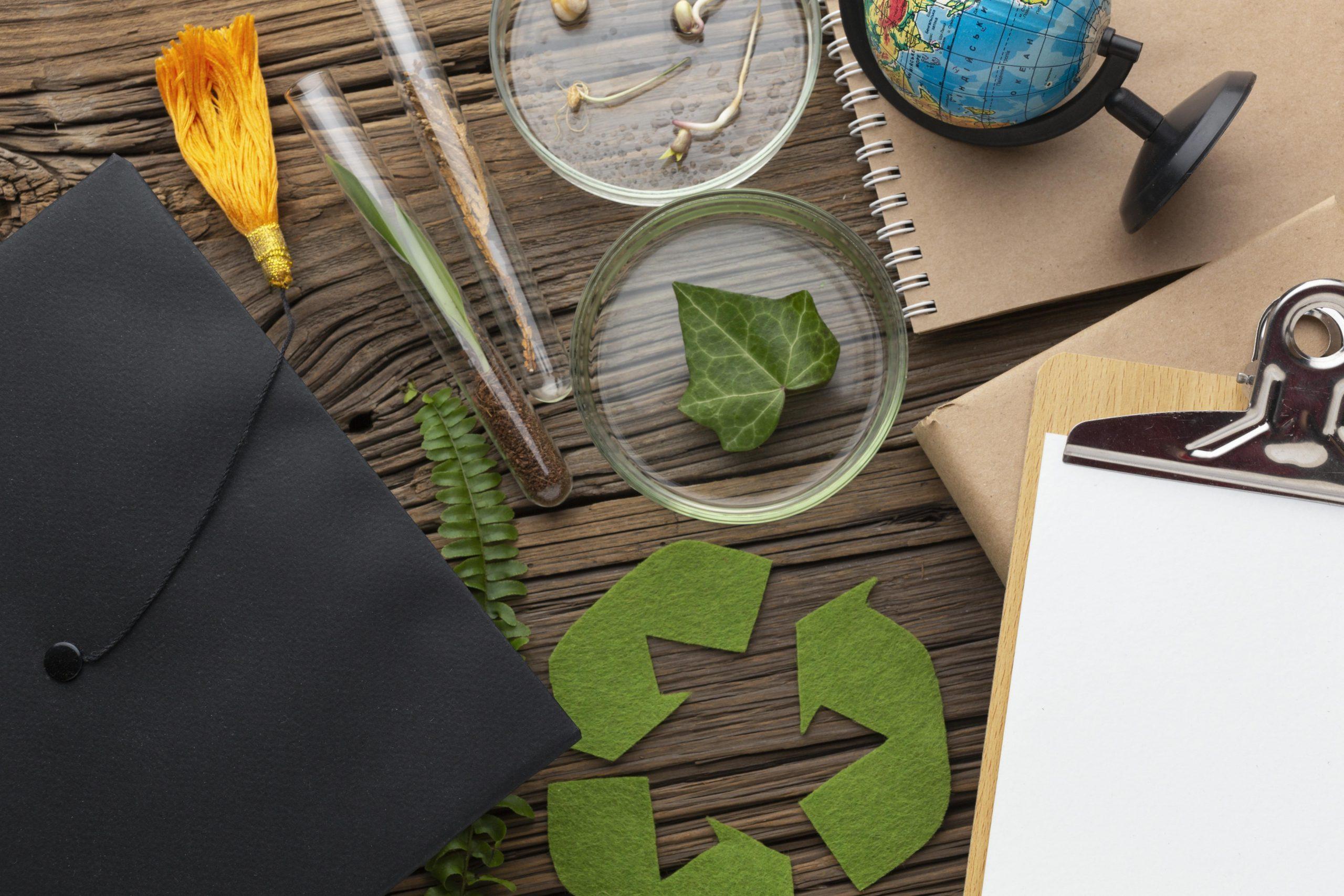 Educación ambiental: importancia en la actualidad